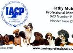 Image of International Association of Canine Professionals Membership Card